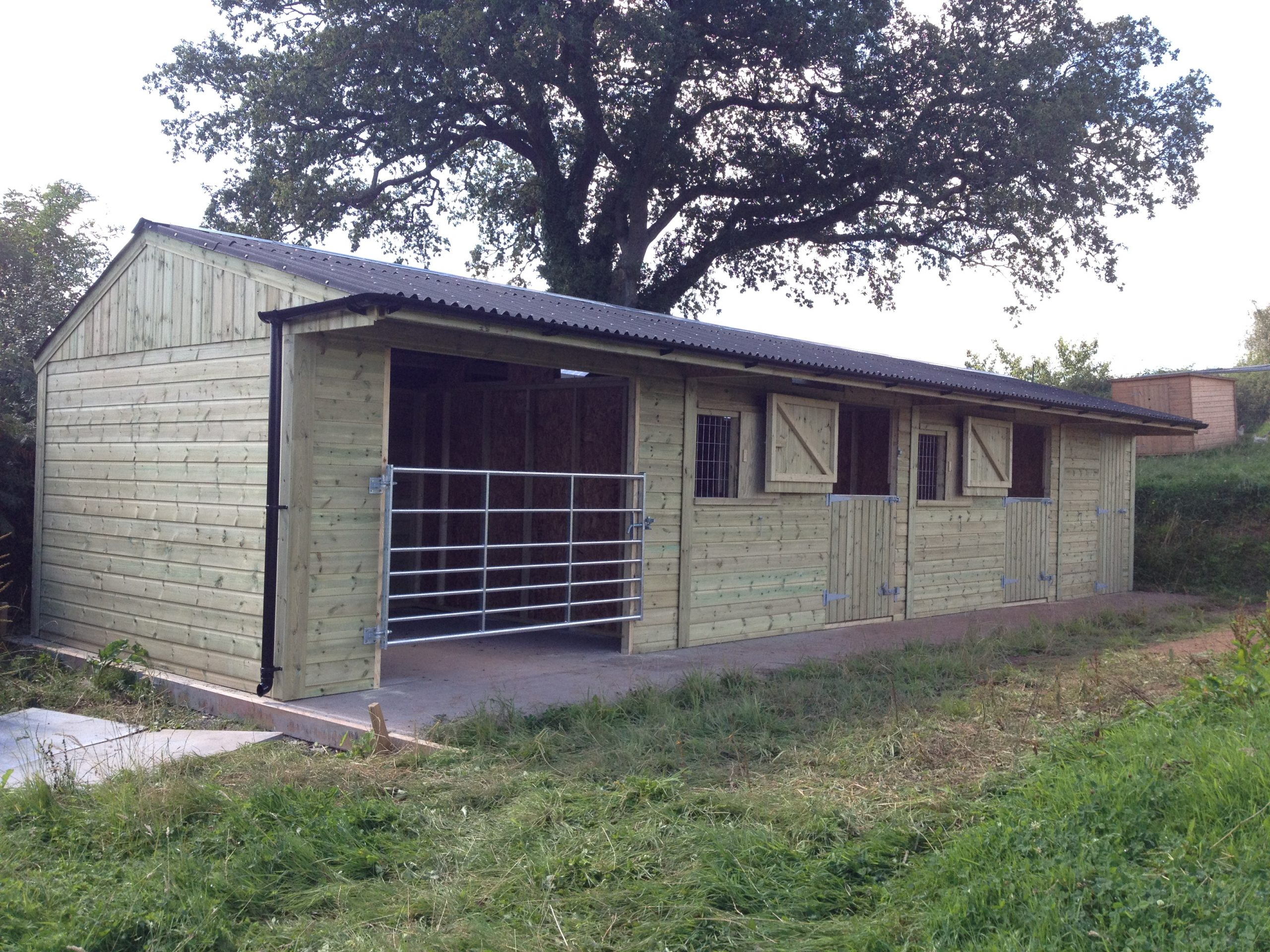Two Stables With Tack Room & Gated Loose Box